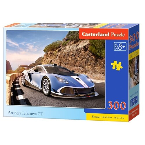 Купить Пазл Castorland Arrinera Hussarya GT (B-030316), 300 дет., Пазлы
