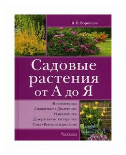 Воронцов Валентин Викторович