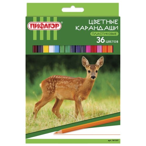 Купить Пифагор Карандаши цветные Лесные жители 36 цветов (181337), Цветные карандаши