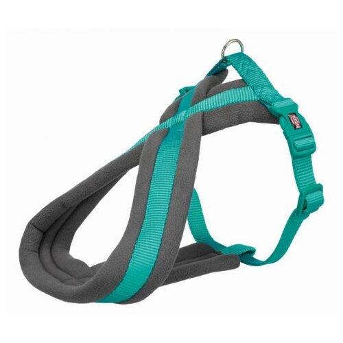 Фото - Шлейка для собак Trixie Premium Touring, размер: S-M, 40–60 см, 20 мм, бирюзовый шлейка для собак trixie premium touring размер s m 40–60 см 20 мм бежевый