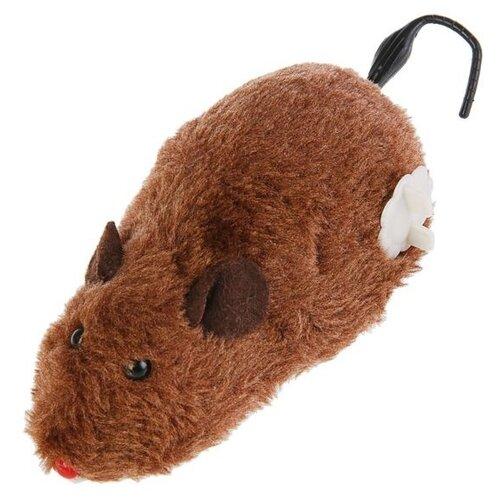 Мышь для кошек Пижон заводная меховая (1120959/1383430) коричневый