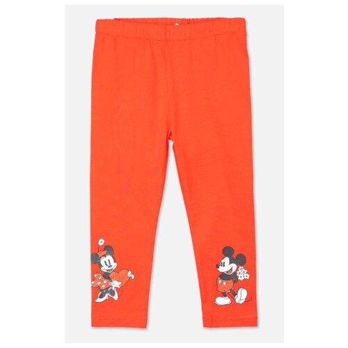 Купить Легинсы playToday Snow college 598104 размер 80, красный, Брюки и шорты
