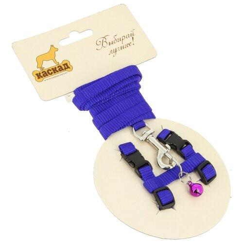 КАСКАД шлейка с поводком для грызунов Synthetic XS (обхват груди 20-30 см) синий