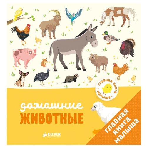 Купить Бессон А. Главная книга малыша. Домашние животные , CLEVER, Познавательная литература
