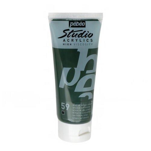 Pebeo Краска акриловая Studio Acrylics, 100 мл зеленый древесный сок pebeo краска акриловая decocreme кремовая матовая 120 мл 04 желтый