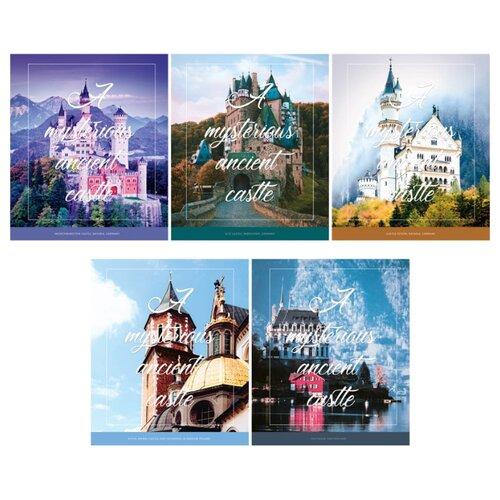 ArtSpace Упаковка тетрадей Путешествия. Mysterious castle Т80л_26699, 5 шт., линейка, 80 л., Тетради  - купить со скидкой