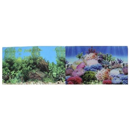 Пленочный фон Prime Коралловый рай/Подводный пейзаж двухсторонний 60х150 см