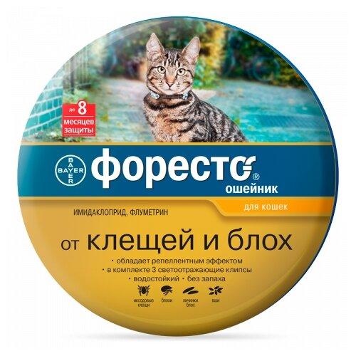 Форесто (Bayer) ошейник от блох и клещей инсектоакарицидный для кошек и котят, 38 см ошейник для кошек beaphar от блох и клещей 35см
