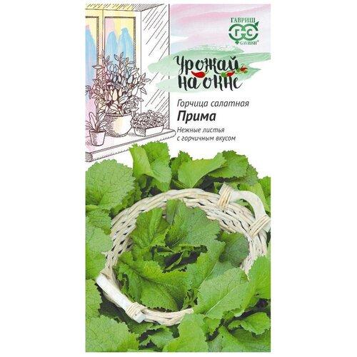 Семена Гавриш Урожай на окне Горчица листовая Прима 1 г, 10 уп. семена гавриш арбуз черный принц 1 г 10 уп