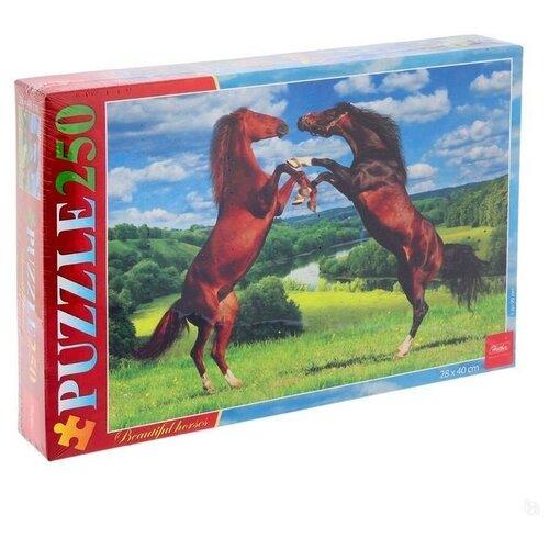 Пазл Hatber Прекрасные лошади (250ПЗ3_10925), 250 дет. пазл hatber букет цветов 250пз3 09919 250 дет