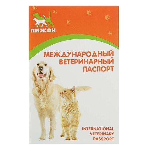 Ветеринарный паспорт Пижон Пижон 10 см