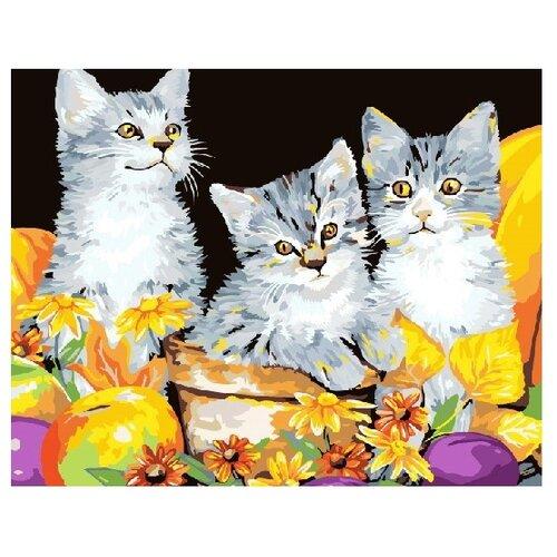 Купить ВанГогВоМне Картина по номерам Котики , 40х50 см (ZX 21487), Картины по номерам и контурам