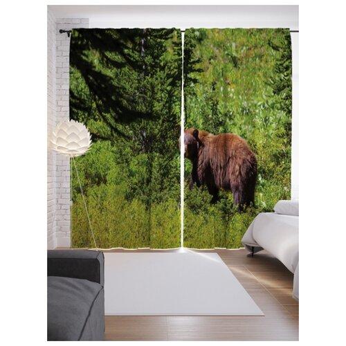 Портьеры JoyArty Медведь в лесу на ленте 265 см (p-4299)