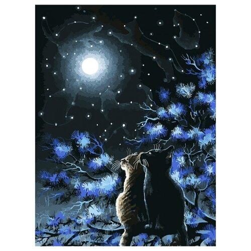 Купить Белоснежка Картина по номерам Созвездия 30х40 см (295-AS), Картины по номерам и контурам