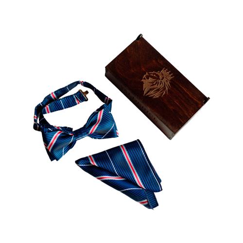 Комплект из 2 предметов Valderice галстук-бабочка и платок VLD0501 темно-синий