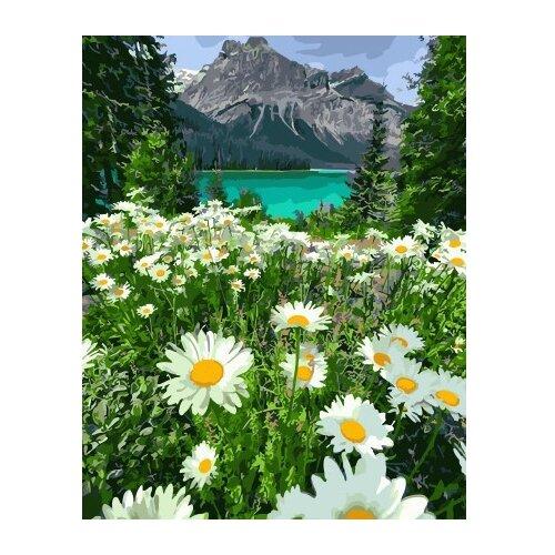 Купить ВанГогВоМне Картина по номерам Поле ромашек , 40х50 см (ZX 21709), Картины по номерам и контурам