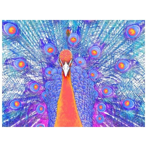 картина по номерам color kit натюрморт с подсолнухами 30x40 см Картина по номерам Color Kit Павлин, 30x40 см
