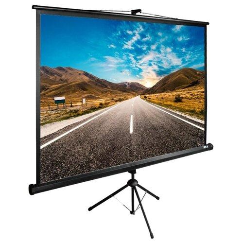 Фото - Экран Cactus 160x160см TriExpert CS-PSTE-160x160-BK 1:1 напольный рулонный черный экран cactus triexpert 180x135cm 4 3 cs pste 180x135 bk