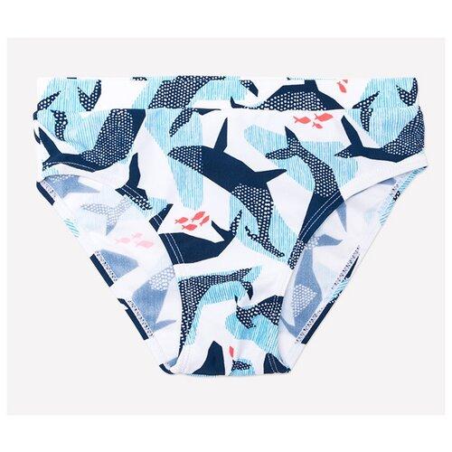 Плавки crockid размер 110-116, синий/белый пигмент холи лайк фестивальные краски 720 07 синий
