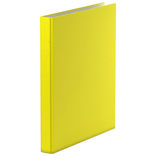 Фото - ErichKrause Папка–регистратор на 2 кольцах Neon А4, 35 мм желтый erichkrause папка–регистратор на 4 кольцах enigma а4 35 мм голубой