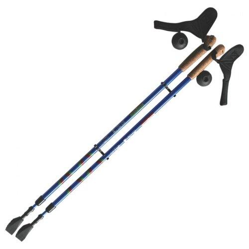 Палки для скандинавской ходьбы со сменными комплектующими Ergoforce E-0673 сине-серебристый