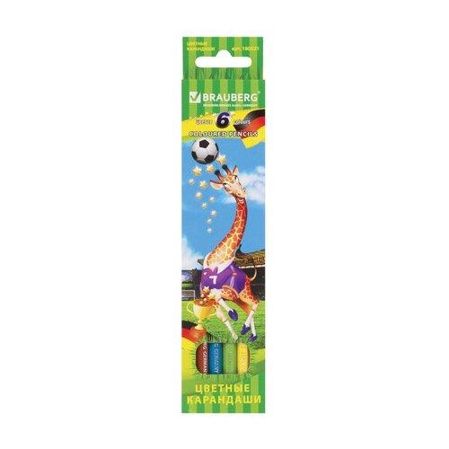 Купить BRAUBERG Карандаши цветные Football match 6 цветов (180521), Цветные карандаши