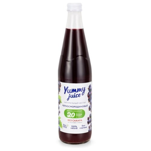Фото - Нектар Yummy juice черносмородиновый, без сахара, 0.5 л нектар juicer облепиха без сахара 0 25 л 10 шт
