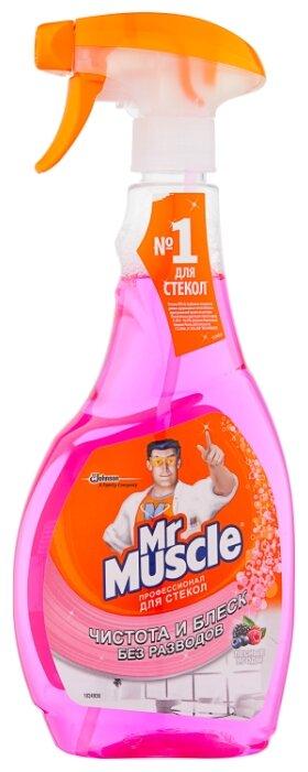 Спрей Mr. Muscle Профессионал для стекол с Ammonia-D Лесные ягоды