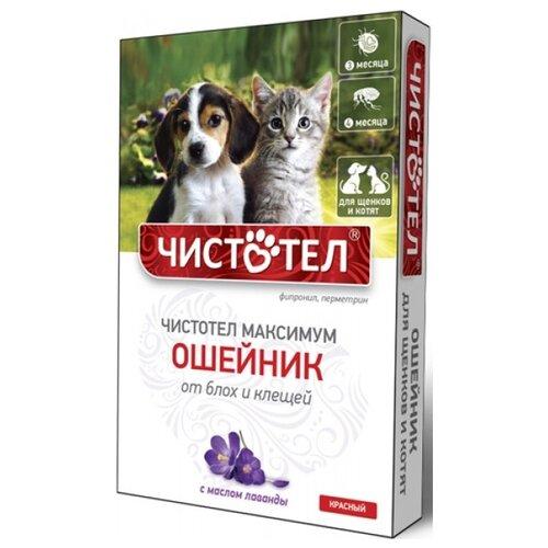 ЧИСТОТЕЛ ошейник от блох и клещей Максимум для котят и щенков, 50 см, красный
