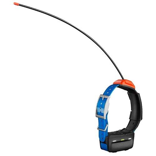 GPS-ошейник ошейник Garmin T5 синий/черный