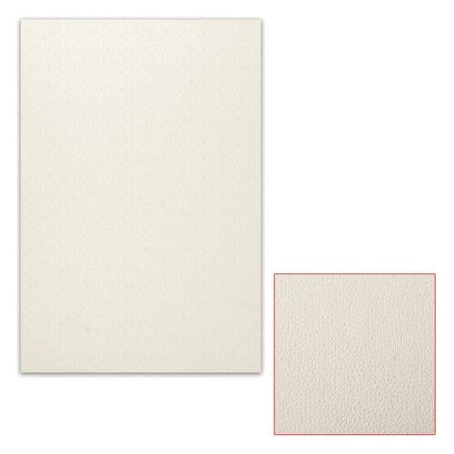 Картон белый грунтованный для масляной живописи, 35х50 см, односторонний, толщина 0,9 мм, масляный грунт картон грунтованный подольские товары для художников для масляной живописи 50 х 70 см 4610003280871