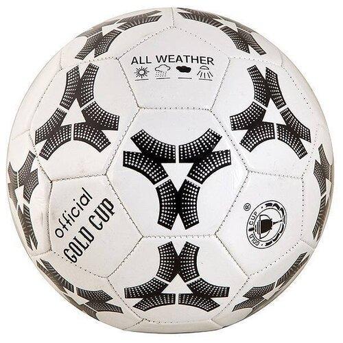 Фото - Футбольный мяч Gold Cup Т15365 черный/белый cup