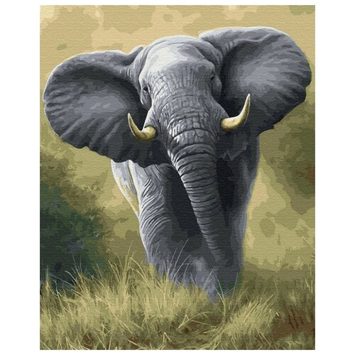 Купить Картина по номерам ВанГогВоМне ZX 22934 Африканский слон 40х50 см, Картины по номерам и контурам