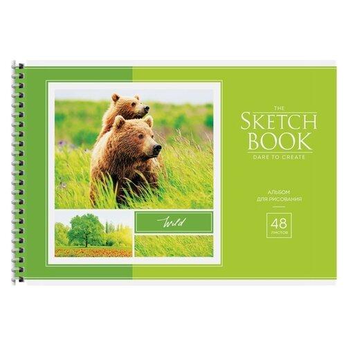 Купить Набор альбомов для рисования ArtSpace Животные. В мире животных 29.7 х 21 см (A4), 100 г/м², 48 л. (4шт.), Альбомы для рисования