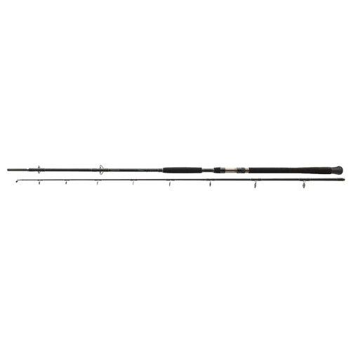Удилище спиннинговое DAIWA EXCELER CATFISH 11818-305