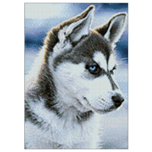 Фото - Гранни Набор алмазной вышивки Снежный пес (Ag 243) 27х38 см гранни набор алмазной вышивки радужный слон ag 482 27х38 см