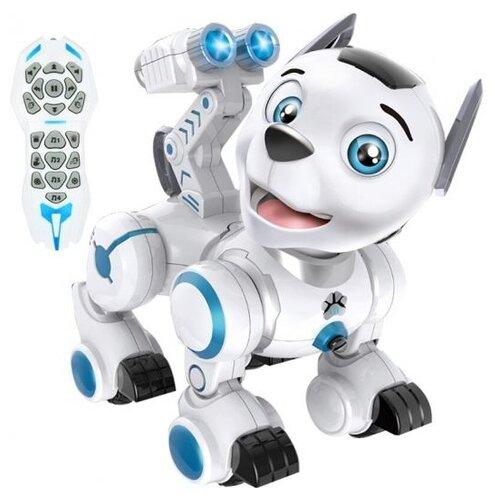 Фото - Робот Zhorya собака Дружок белый/голубой радиоуправляемый робот zhorya интерактивный белый кот 2059