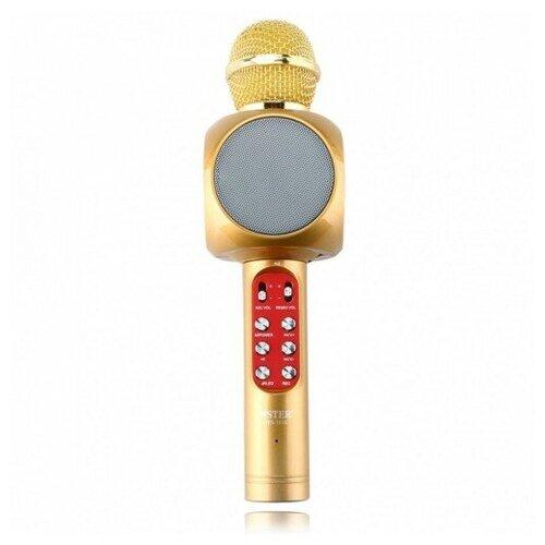 Беспроводной караоке микрофон со встроенной колонкой Wster WS-1816 (Золото)