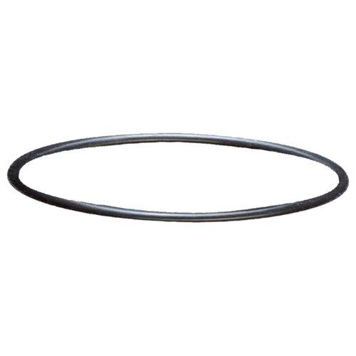 Прокладка Sera для помпы фильтра Fil Bioactive 130 и 130 + UV (30637) ротор для фильтра sera fil bioactive 130 и 130 uv 1 шт