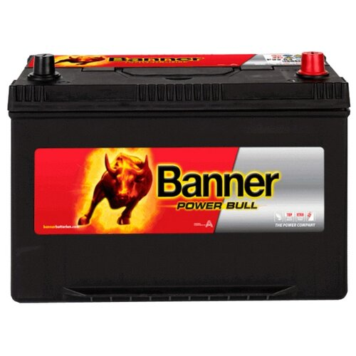 Аккумулятор Banner Power Bull P95 04