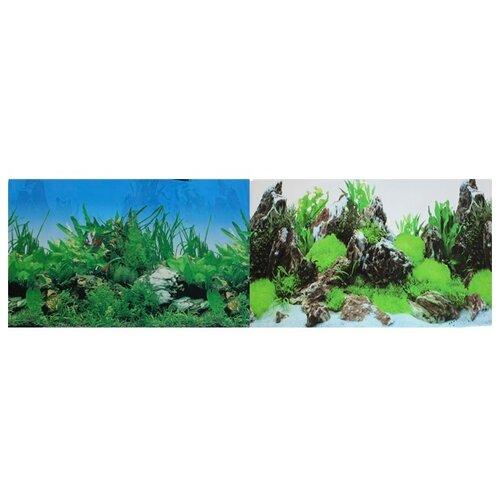 Пленочный фон Prime Растительный/Скалы двухсторонний 50х100 см фон для аквариума hagen двухсторонний растительный растительный 45см цена за 10см
