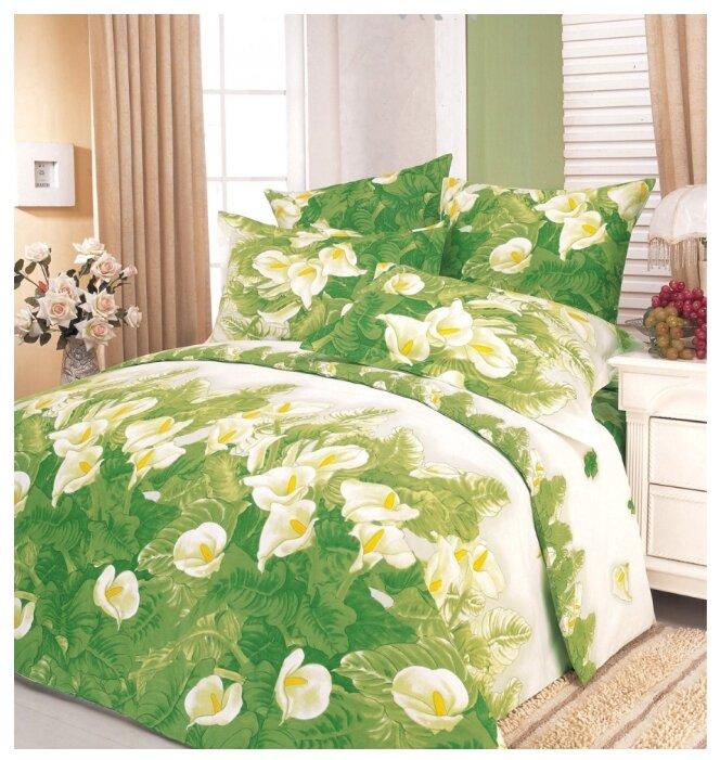 Постельное белье семейное СайлиД A-34, поплин зеленый