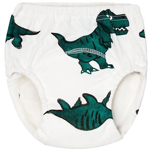 Joyo Roy трусики шестислойные р.80 (10-12 кг) 1 шт. динозавры зеленые roy ayers roy ayers lifeline 180 gr