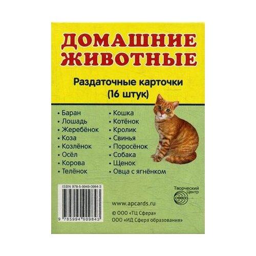 Купить Домашние животные. 16 раздаточных карточек с текстом на русском и английском языках, Творческий Центр СФЕРА, Учебные пособия
