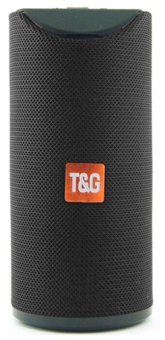 Портативная акустика T&G TG113 — купить по выгодной цене на Яндекс.Маркете