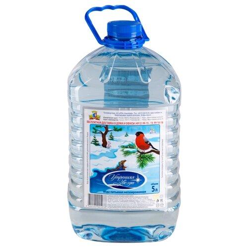 Вода питьевая Утренняя звезда негазированная, ПЭТ, 5 л стела утренняя звезда