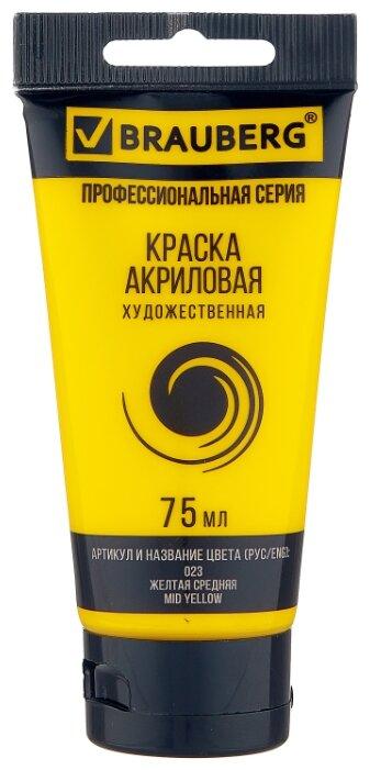 Купить BRAUBERG Краска акриловая художественная Профессиональная серия 75 мл желтая средняя по низкой цене с доставкой из Яндекс.Маркета