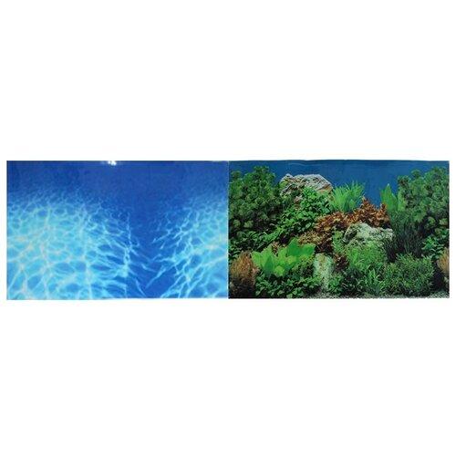 Пленочный фон Prime Синее море/Растительный пейзаж двухсторонний 30х60 см фон для аквариума hagen двухсторонний растительный растительный 45см цена за 10см