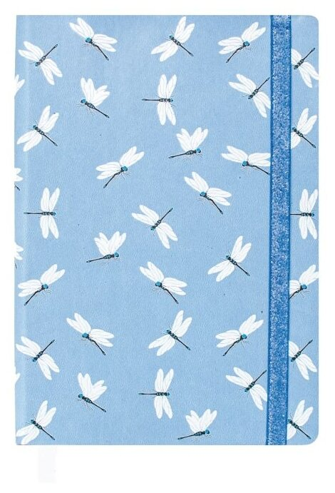 Ежедневник Феникс+ Виннер недатированный, искусственная кожа, А5, 160 листов