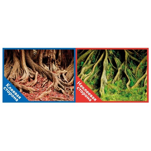 Пленочный фон Prime Корни с листьями/Корни с мохом двухсторонний 50х100 см